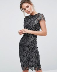Paper Dolls Metallic Lace Pencil Dress Metallic Black Silve