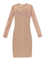 Elie Saab Stretch Knit And Lace Dress