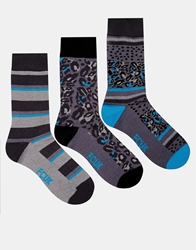 French Connection 3 Pack Socks Grey
