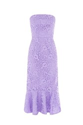 Warehouse Strapless Premium Lace Dress Lilac