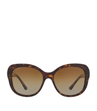 Bulgari Bvlgari Square Sunglasses Female Brown