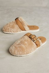 Anthropologie All Black Shearling Buckle Slides Taupe