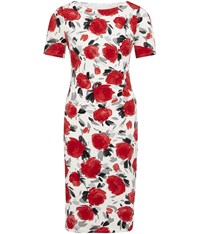 Cc Rose Print Jersey Dress Red
