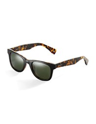 Polaroid Wayfarer Sunglasses Brown Black