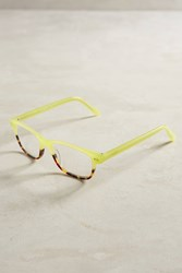 Anthropologie Harley Reading Glasses Lime