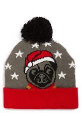 Junior Women's Capelli Of New York 'Jolly Pug' Led Beanie
