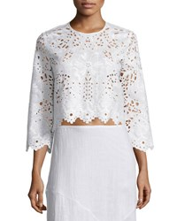 Theory Brizabela Embroidered Linen Crop Top White
