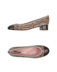 Studio Pollini Pumps Dark Brown
