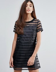 Zibi London Organze Dress With Sheer Stripes Black