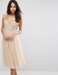 Needle And Thread Swan Tulle Midi Dress With Frill Sleeve Petal Pink