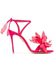 Aquazzura Floral Strappy Sandals Pink And Purple