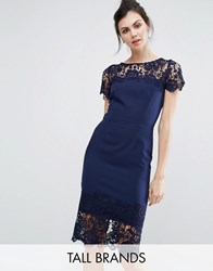Paper Dolls Tall Lace Contrast Midi Ribbed Pencil Dress With Belt Navy