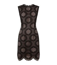 Reiss Dixie Graphic Lace Dress Female Black