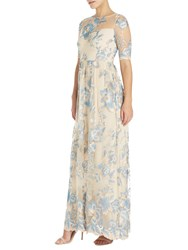Adrianna Papell Petite Long Illusion Embroidered Mesh Gown Thundercloud Gold