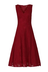 Jolie Moi Scalloped V Neck Lace Dress Red