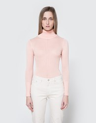 Which We Want Sheer Turtleneck In Blush