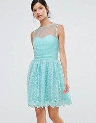 Little Mistress Lace Skater Dress Green