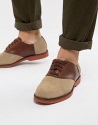 Polo Ralph Lauren Orval Derby Shoes Suede Leather Saddle Mix In Stone Brown Milkshake Brown