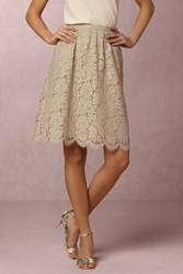Anthropologie Lydia Lace Skirt Grey