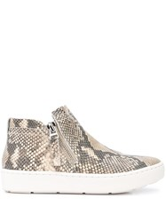 Dolce Vita Snakeskin Effect Side Zip Sneakers 60