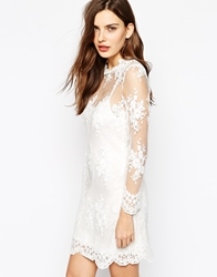 Dahlia Lace Dress With Daisy Detail Cream