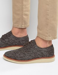 Toms Brogue Shoes Brown