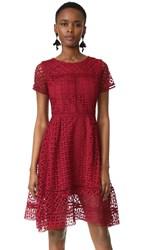 Cupcakes And Cashmere Mori Lace Fit Flare Dress Brick Red