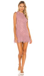 Donna Mizani Daisy Mini Dress In Pink.