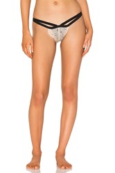 Les Coquines Lily Thong Beige