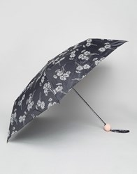New Look Floral Daisy Umbrella Black