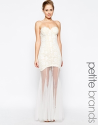 Jarlo Petite Sydney Bandeau Lace Dress With Sheer Skirt Ivory
