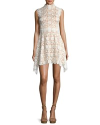 Catherine Deane Izzy Sleeveless Floral Lace Fit And Flare Dress Oyster