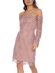 True Decadence Lace Bardot Dress Dusty Pink