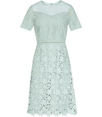 Reiss Heather Lace Dress In Sage
