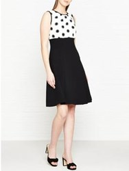 Hobbs Sun Spot Fit And Flare Dress Ivory Black
