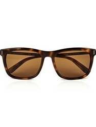 Calvin Klein Collection Wayfarer Men's Sunglasses Tortoiseshell