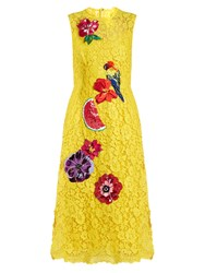 Dolce And Gabbana Embroidered Cordonetto Lace Dress Yellow