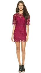 Re Named Lace Dress Oxblood