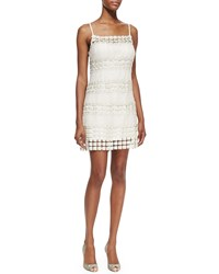 Phoebe Couture Crochet Floral Panel Cocktail Dress Ivory