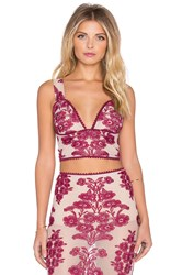 For Love And Lemons Temecula Crop Top Burgundy