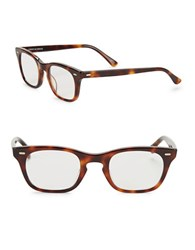 Corinne Mccormack 48Mm Toni Reading Glasses Brown