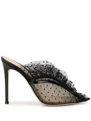 Gianvito Rossi Ditted Tulle Mules Black