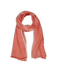 Altea Accessories Oblong Scarves Women