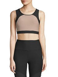 X By Gottex Key Shaped Mesh Sports Bra Bahamas