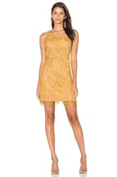 Wayf Orleans Lace Mini Dress Yellow