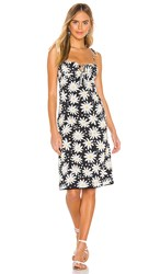 Solid And Striped Lolita Dress In Black. Graphic Daisy