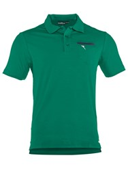 Chervo Agrume Plain Slim Fit Green