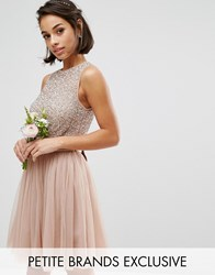 Maya Petite Sleeveless Sequin Top Mini Dress With Tulle Skirt And Bow Back Detail Mink Pink