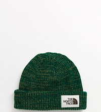 The North Face Salty Dog Beanie In Green
