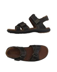 Timberland Footwear Sandals Men